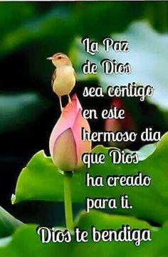 La paz de Dios sea contigo