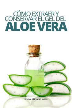 Diy Aloe Vera Gel, Gel Aloe, Health And Beauty Tips, Health And Wellness, Health Tips, Beneficios Aloe Vera, Home Remedies, Natural Remedies, Natural Aloe Vera