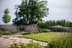 Zahrada zvlněná Landscape Architecture, Landscape Design, Boxwood Garden, Good Morning Flowers, Sidewalk, Country Roads, Nature, Plants, Instagram