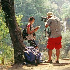 Dschungelwanderung in Thailand