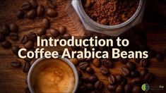 Introduction to Coffee Arabica Beans Tostadas, Coffee Shop Names, Best Instant Coffee, Coffee Counter, Coffee Maker Reviews, Arabica Coffee Beans, Discount Coffee, French Press Coffee Maker, Freeze Drying