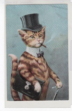 AN185 Postcard Animal Well Dressed Cat in top hat and cane smoking KVIB #1255 in Animals | eBay