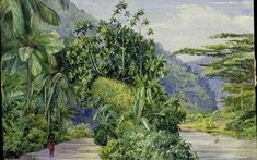 Marianne North - one of her views of Jamaica. I find Marianne North fascinating - do look her up.