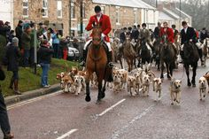 Lanchester Boxing Day 2014 - Illegally hunting with hounds.