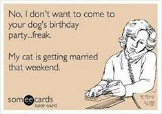 """65 Funny Friend Memes - """"No, I don't want to come to your dog's birthday party. My cat is getting married that weekend. Best Friend Meme, Funny Friend Memes, Marry Your Best Friend, Birthday Memes For Him, Cat Birthday, Birthday Cards, Wedding Meme, Cat Wedding, Getting Married Funny"""