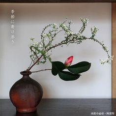 南蛮小扁壺・阿部努 Vase, Plants, Gold, Home Decor, Decoration Home, Room Decor, Plant, Vases, Home Interior Design