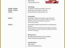 Lebenslauf Kostenlose Vorlagen Online Editor 14