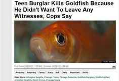 Needlessly thorough teen burglars.   31 People Who Will Make You Not Want To Live On This Planet Anymore