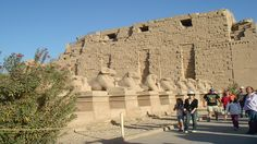 visit Katnak Temple of the main god in ancient Egypt Amoun Ra and Contains of huge 10 pylons and huge Hypostyle Hall full of Columns in two different high