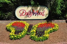 Find out the best places to take pictures in Dollywood
