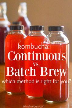 kombucha continuous batch brew