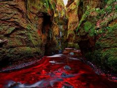 30 Photos of Fascinating Places Around the World - Blood River, Devil's Pulpit, Gartness, Scotland Places Around The World, Oh The Places You'll Go, Places To Travel, Places To Visit, Around The Worlds, Vacation Places, Vacation Destinations, Dream Vacations, All Nature