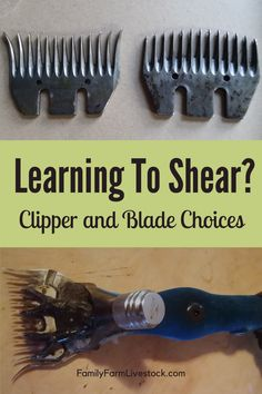 What are your clipper and blade choices for shearing sheep? If you are new to shearing, you've come to the right place! Let me help you figure out which clippers and which blades to get and the ones to avoid! Pet Sheep, Sheep Farm, Goat Shed, Show Goats, Sheep Shearing, Goat Care, Baa Baa Black Sheep, Dog Pads, Dog Language