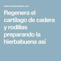 Regenera el cartílago de cadera y rodillas preparando la hierbabuena así #remediosnaturales