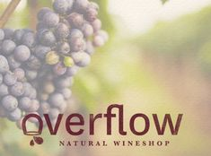 Custom logo design for Overflow Natural Wineshop.  Incorporated a wine glass within the logo.