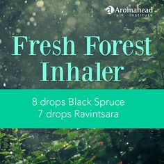 """Boost your immunity, relax tension in your muscles, ease aches and pains throughout your body and increase your energy! This """"Fresh Forest Inhaler"""" with Black Spruce and Ravintsara  is great for recovering from a cold or the flu!"""