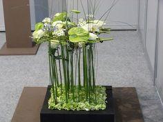 Copa Junior de Arte Floral | Rosa Valls | Flickr