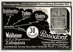 Original-Werbung/ Anzeige 1911 - BERGMANNS ZAHNPASTA ROSODONT GEGEN TYPHUS UND CHOLERA / WALDHEIM  - ca. 120 x 90 mm