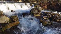 Phantom 3 Standard footage - San Marcos River @ Aquarena Springs