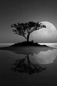 Αποτέλεσμα εικόνας για black and white photos landscapes