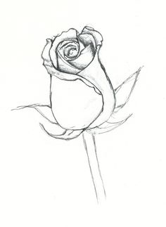 Find This Pin And More On Floral Bouquet Really Fragrant Flower Coloring Page