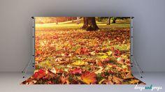 Autumn Golden Hour - Photography Backdrop