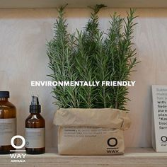 Our communication and salon set-up materials are recycled or eco-certified: FSC-certified paper and cardboard PEFC-certified wood bioplastics recycled PET. #biodynamic #oway #owayaustralia #recycled #hair #organichair #cleanliving #brisbanehair #sydneyhair #melbournehair