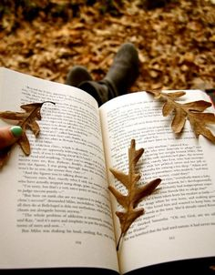 Autumn Reading.