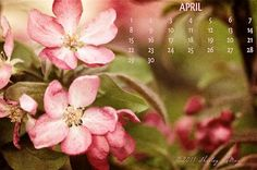 Free April 2012 Desktop Calendar