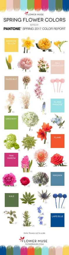 We share our picks of 2017 spring flowers as inspired by Pantone's Spring Color Report. Get ideas for your wedding or event with our flower color board!