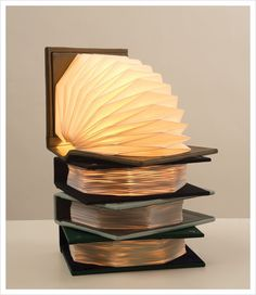 """Book Light. They really made a book light into a real """"book light"""" :)"""
