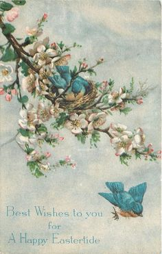 Easter~Blue Yellow Birds Build Nest in Pink White Apple Blossom Tree~Gibson Art | eBay