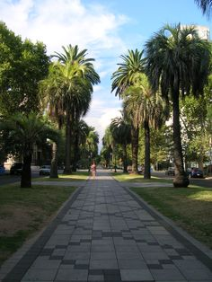 Os espaços verdes públicos – Entre demanda e possibilidades efetivas