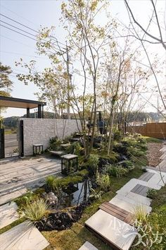 Landscape Lighting Design, Japan Landscape, New Chinese, Japanese Gardens, Plant Design, Asian Style, Scene, Gardening, Plants