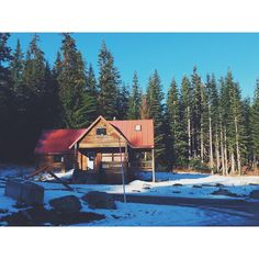 """©HonestMag  """"Drove up to #snoqualmiepass to wander around the fresh snow and watch the cabins come to life for the season! ❄️ #hyak #winterishere #summitatsnoqualmie…"""""""