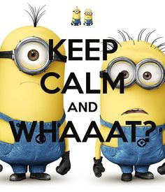 Keep calm and whaaat