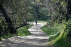 L.A. WALKS Follow the winding path at Elysian Park Panoramic city and mountain views are a feature of this trail near Dodger Stadium.