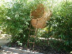 Nest, Babylonstoren by woodfirer, via Flickr  This in a tree, a reading nest  pillows, blankets,