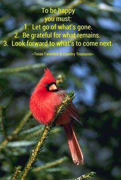 Northern Cardinal, My mama's favorite bird. Pretty Birds, Beautiful Birds, Positive Words, Positive Quotes, Bird Pictures, Cardinal Pictures, Northern Cardinal, Cardinal Birds, Kinds Of Birds