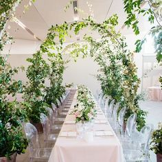 wedding table decorated with greenery and vine arches, mimicking the ceremony arbor. Long rectangular tables with ghost chairs were topped with pink linens and an ivory tulle overlay, which was chosen to match the bride's dress. Long Table Wedding, Green Wedding, Floral Wedding, Wedding Colors, Rustic Wedding, Wedding Themes, Wedding Flowers, Arch Wedding, Drapery Wedding
