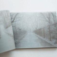 【michisiruve】さんのInstagramをピンしています。 《Book 6. 故郷の記憶を重ねて綴じる。  今の景色に過去の記憶を重ねながら、写真におさめて綴じる。 『sakura no machi』(2016) 21年ぶりに故郷を巡り、過去の記憶を重ねながら写真におさめたZINE。 http://michi-siruve.com/booklist2016/ #zine #zine作家 #本 #手製本 #和紙 #豆本 #和綴じ #book #photobook #bookbinding #handmadebook #japanesepaper  #ココロイシ #掌の記憶 #michisiruve #掌 #写真 #桜 #小金井公園 #花小金井 #故郷 #sakura #cherryblossom #flowers #hometown》