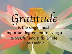 Gratitude and acknowledgment are essential components in creating and attracting what you want in your life. Through the expression of gratitude on a daily basis, you align yourself to receive all the good the universe has to offer. By simply focusing your thoughts and attention on the abundance that is already present in your life, you will literally shift your energy to a positive vibration that will automatically and effortlessly attract even more to be grateful for. Jack Canfield