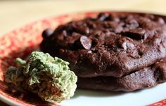 Recipe: Chewy Chocolope Chocolate Protein Cookies