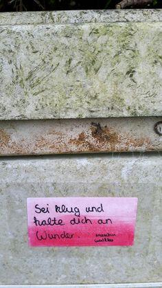 """""""Sei klug und halte dich an Wunder."""" Mascha Kaléko Streetart urban guerilla poesie straße aufkleber sticker"""
