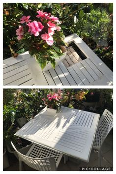 Canna Lily, Balcony Plants, Tall Plants, Petunias, Gadgets, Table, Home Decor, Courtyards, Balcony Planters