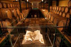 Cantina Cordero di Montezemolo. Opera di Luca Cassine #lamorra #langhe Barolo Wine, Virginia Wineries, Wine Case, Bottle Carrier, Home, Opera, Key, Lifestyle, Opera House