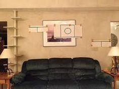 Resultado de imagem para catify your house