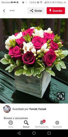 Rosas e frésia - lindas! - Flores e plantas - . Amazing Flowers, Fresh Flowers, Beautiful Flowers, Hot Pink Flowers, Flower Colors, Flowers Vase, Table Flowers, Types Of Flowers, Succulent Centerpieces