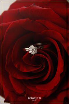Ein Ring für Romantiker: dieser bezaubernde Ring aus Weißgold lässt Funken sprühen! Perfekt als Valentinstags-Geschenk oder Überraschung anlässlich zum Jahrestag geeignet.