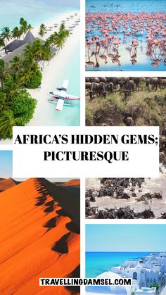 Pictures of some of Africa's most beautiful destinations Lake Retba, The Great Migration, Exotic Beaches, Pyramids Of Giza, Victoria Falls, Continents, Passport, Egypt, Beautiful Places